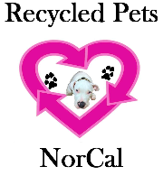 RPN Logo